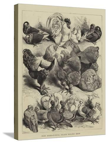 Prize Birds, Crystal Palace Poultry Show-Harrison William Weir-Stretched Canvas Print