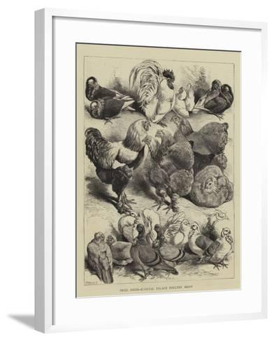 Prize Birds, Crystal Palace Poultry Show-Harrison William Weir-Framed Art Print