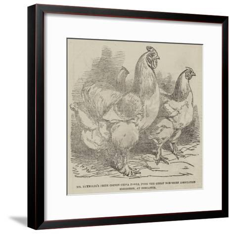 Mr Reynolds's Prize Cochin-China Fowls-Harrison William Weir-Framed Art Print