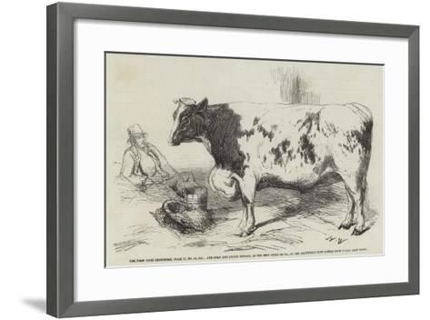 The First Prize Shorthorn-Harrison William Weir-Framed Art Print