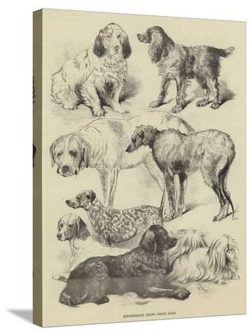Birmingham Show, Prize Dogs-Harrison William Weir-Stretched Canvas Print