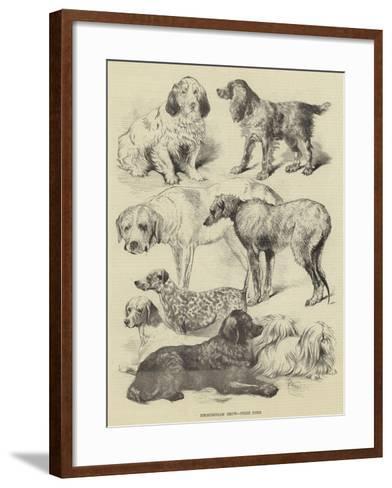 Birmingham Show, Prize Dogs-Harrison William Weir-Framed Art Print