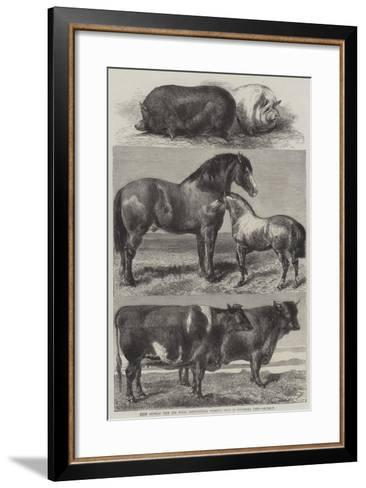 Prize Animals from the Royal Agricultural Society's Show in Battersea Park-Harrison William Weir-Framed Art Print