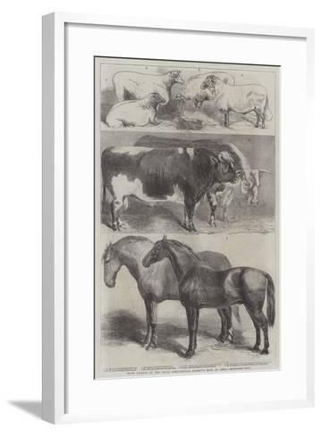Prize Animals at the Royal Agricultural Society's Show at Leeds-Harrison William Weir-Framed Art Print