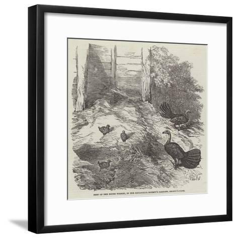 Nest of the Brush Turkey, in the Zoological Society's Gardens, Regent'S-Park-Harrison William Weir-Framed Art Print