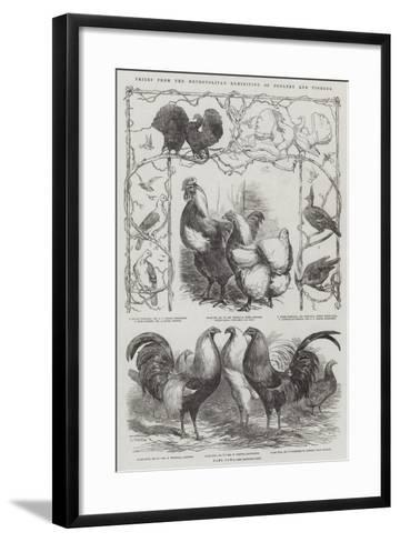 Prizes from the Metropolitan Exhibition of Poultry and Pigeons-Harrison William Weir-Framed Art Print