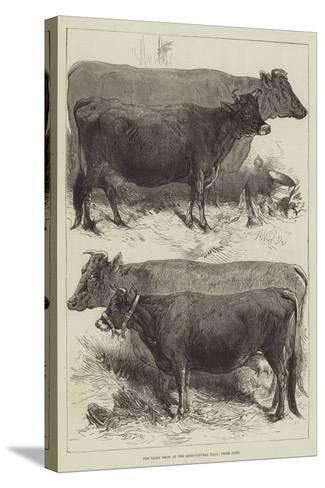 The Dairy Show at the Agricultural Hall, Prize Cows-Harrison William Weir-Stretched Canvas Print