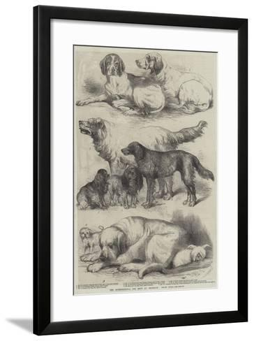 The International Dog Show at Islington, Prize Dogs-Harrison William Weir-Framed Art Print