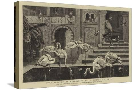The Pets of an Eastern Palace, a Tunisian Study-Harry Hamilton Johnston-Stretched Canvas Print