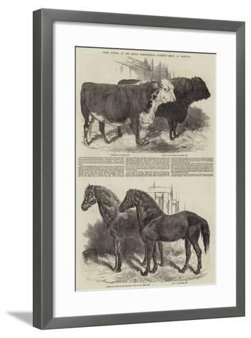Prize Cattle, at the Royal Agricultural Society's Show, at Norwich-Harrison William Weir-Framed Art Print
