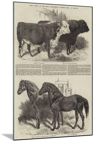 Prize Cattle, at the Royal Agricultural Society's Show, at Norwich-Harrison William Weir-Mounted Giclee Print