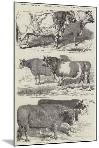 Prize Cattle at the Royal Agricultural Society's Show, at Windsor-Harrison William Weir-Mounted Giclee Print