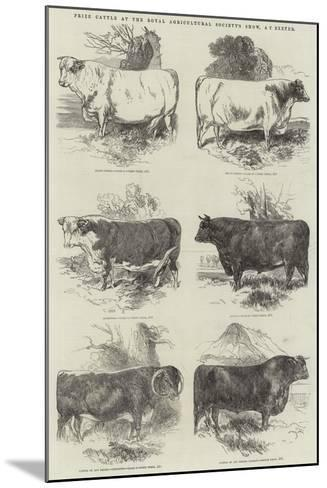 Prize Cattle at the Royal Agricultural Society's Show, at Exeter-Harrison William Weir-Mounted Giclee Print