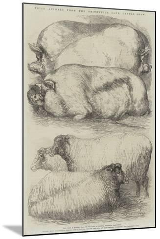 Prize Animals from the Smithfield Club Cattle Show-Harrison William Weir-Mounted Giclee Print
