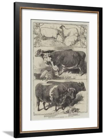 Prize Animals of the Smithfield Club Cattle Show-Harrison William Weir-Framed Art Print