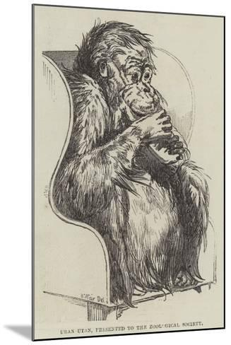 Uran-Utan, Presented to the Zoological Society-Harrison William Weir-Mounted Giclee Print