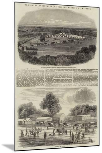 The Royal Agricultural Society's Meeting at Windsor-Harrison William Weir-Mounted Giclee Print