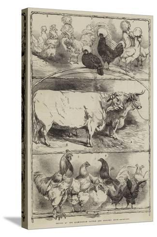 Prizes at the Birmingham Cattle and Poultry Show-Harrison William Weir-Stretched Canvas Print