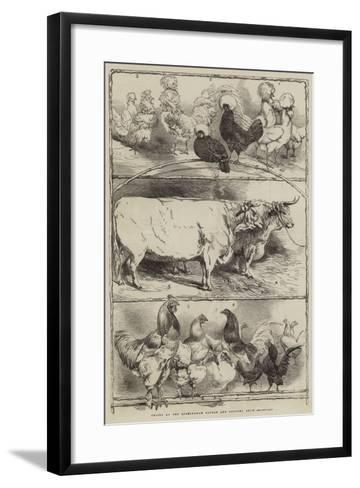 Prizes at the Birmingham Cattle and Poultry Show-Harrison William Weir-Framed Art Print