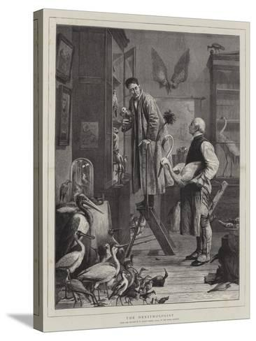 The Ornithologist-Henry Stacey Marks-Stretched Canvas Print