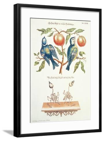 Blue Tits from Angenehmer Und Nutzlicher-J. D. Meyer-Framed Art Print