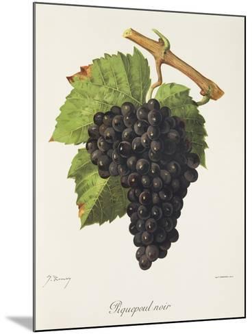 Piquepoul Noir Grape-J. Troncy-Mounted Giclee Print