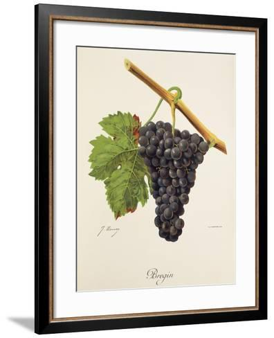 Bregin Grape-J. Troncy-Framed Art Print
