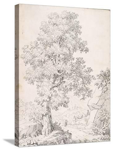 Landscape, a Shepherd and His Goats Walking by a Tree-I. Inghivami-Stretched Canvas Print