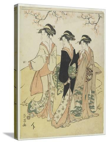 Three Courtesans under Cherry Tree, C. 1790s-Hosoda Eisho-Stretched Canvas Print