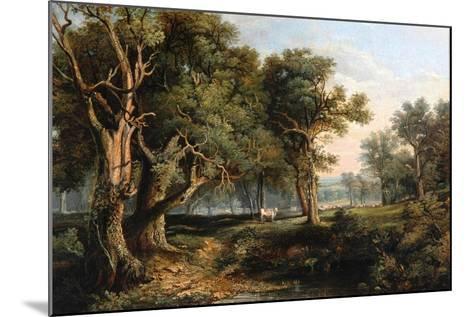 Woodland Scene-James Stark-Mounted Giclee Print