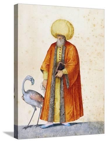 Turkish Man with Flamingo-Jacopo Ligozzi-Stretched Canvas Print