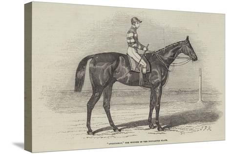 Sweetmeat, the Winner of the Doncaster Plate-James Herring-Stretched Canvas Print