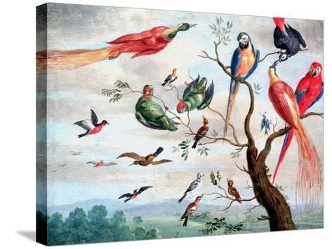 The Chorus of Birds, C.1650-1675-Jan Thomasz. van Kessel-Stretched Canvas Print