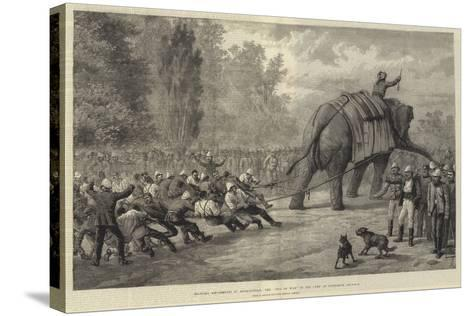Military Amusements in Afghanistan, the Tug of War in the Camp at Gundamuk-Johann Nepomuk Schonberg-Stretched Canvas Print