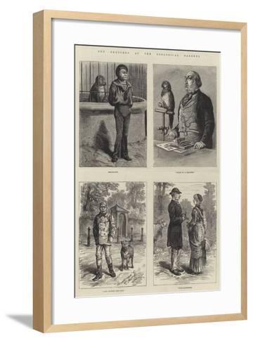 Odd Sketches at the Zoological Gardens-Johann Nepomuk Schonberg-Framed Art Print