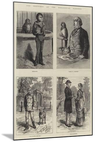 Odd Sketches at the Zoological Gardens-Johann Nepomuk Schonberg-Mounted Giclee Print