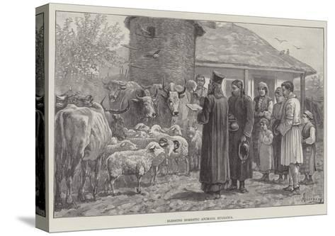 Blessing Domestic Animals, Bulgaria-Johann Nepomuk Schonberg-Stretched Canvas Print