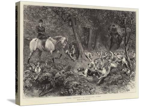Hard Pressed, a Woodland Scene-John Charlton-Stretched Canvas Print
