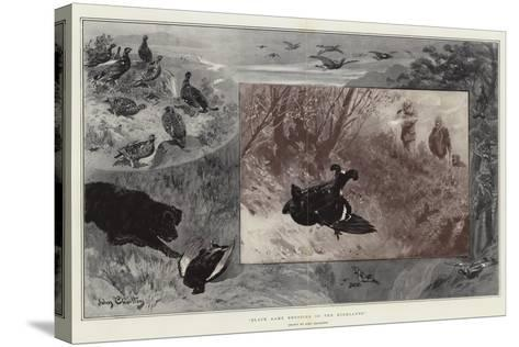 Black Game Shooting in the Highlands-John Charlton-Stretched Canvas Print