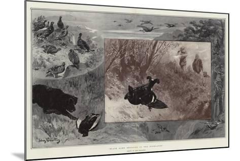 Black Game Shooting in the Highlands-John Charlton-Mounted Giclee Print