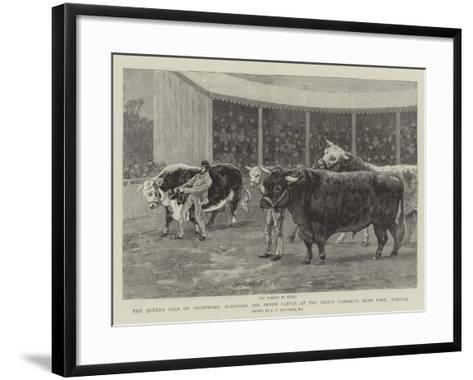 The Queen's Sale of Shorthorn, Hereford and Devon Cattle at the Prince Consort's Shaw Farm, Windsor-John Charles Dollman-Framed Art Print