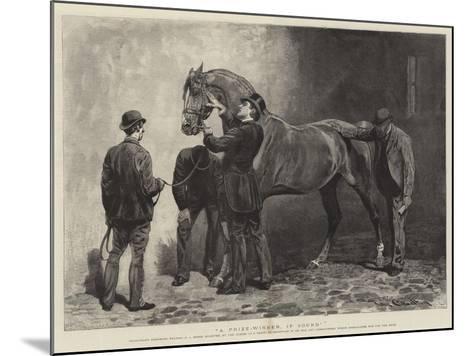 A Prize-Winner, If Sound-John Charlton-Mounted Giclee Print