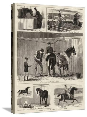 Sketches at the Islington Horse Show-John Charles Dollman-Stretched Canvas Print