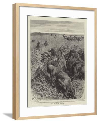 The Stalker Stalked-John Charlton-Framed Art Print