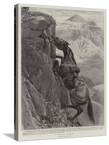 A Perilous Position-John Charlton-Stretched Canvas Print