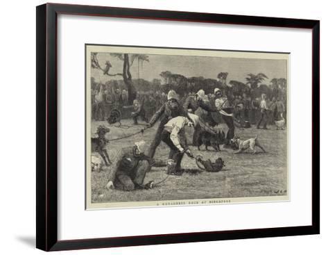 A Menagerie Race at Singapore-John Charles Dollman-Framed Art Print