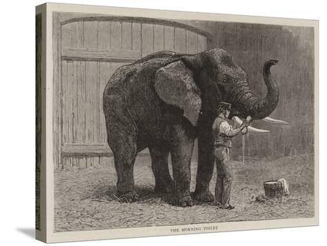 Wanderings in the Zoo-John Charles Dollman-Stretched Canvas Print