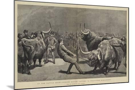 At the Cattle Show, Judging Scotch Cattle, A Fractious Hielander-John Charlton-Mounted Giclee Print