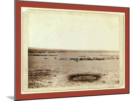Cattle Round Up-John C. H. Grabill-Mounted Giclee Print