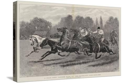A Polo Pony Tandem Race at the Ranelagh Club Grounds-John Charlton-Stretched Canvas Print